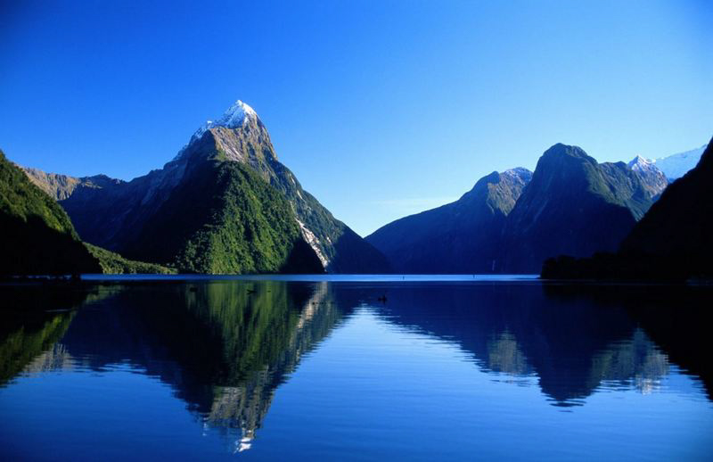Milford Sound Website Version 2