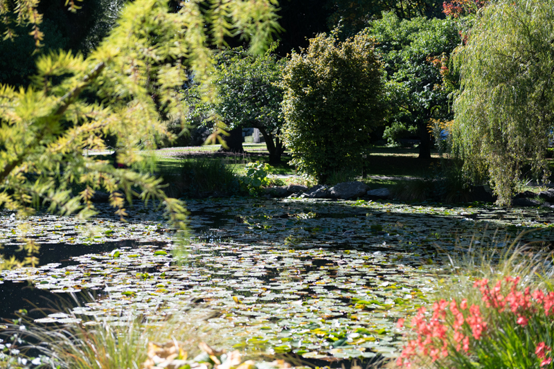 Queenstown Gardens Martin Mifsud Website Version 3731