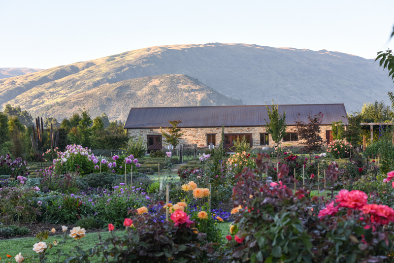 Wanaka Lavender Farm Website Version 2