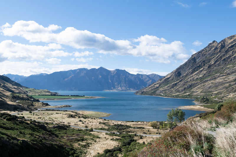 Lake Hawea Website Version 3577