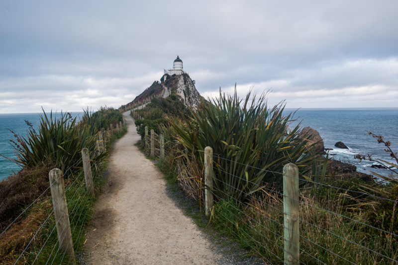 Nugget Point Sam Deuchrass Website Version 1