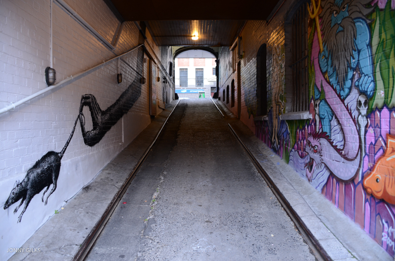 Dunedin Alleys Jonny Gilks Website Version 5565